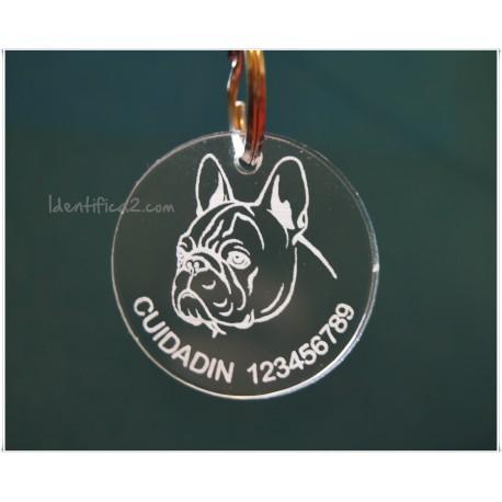 Placa Identificativa Bulldog Francés