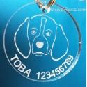 Placa Identificativa Beagle. Opción 2